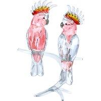 Swarovski Pink Cockatoos | 5244651