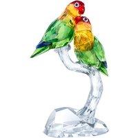 Swarovski Lovebirds | 5379552 - Swarovski Gifts