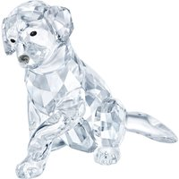 Swarovski Labrador Mother   5399004 - Labrador Gifts