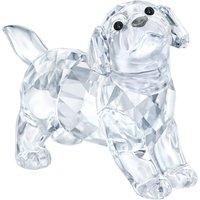 Swarovski Labrador Puppy, Standing   5400141 - Labrador Gifts