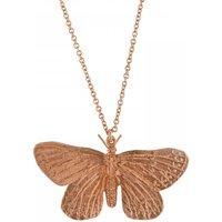 Alex Monroe Duke Of Burgundy Butterfly Rose Gold Necklace   Etn3-rgp