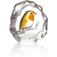 Maleras Wildlife Robin - Robin Gifts