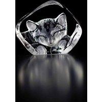 Maleras Wildlife Miniature Cat, Miniature - Cat Gifts