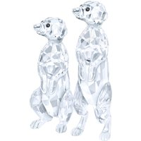 Swarovski Meerkats | 5135929 - Decorations Gifts