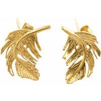 Alex Monroe Little Feather Stud Gold Plate Earrings   Tfe5/gp