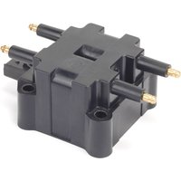 Dry Ignition Coil Intermotor 12100