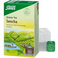 Grüner TEE Bio Salus Filterbeutel 15 St