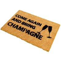 Front Doormat 60x40cm Champagne
