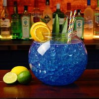 XL Plastic Cocktail Fish Bowl 175oz / 5ltr (Case of 18) - Fish Gifts