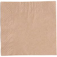 Recycled Unbleached Napkins 24cm 2ply+ (Case of 4000)