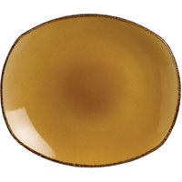 "Steelite Terramesa Spice Plate Mustard 10"" / 25.5cm (Set of 24)"
