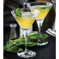 Nude Primeur Martini Glasses 8.5oz / 240ml (Set of 12)