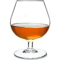 Degustation Brandy Glasses 8.8oz / 250ml (Pack of 6)