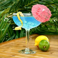 Fiesta Grande Margarita Glasses 17.6oz / 500ml (Case of 12)