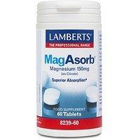 Lamberts MagAsorb 60 Tabs