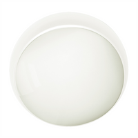 Eterna 18.5W LED Decorative Ceiling and Wall Fitting