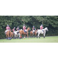 Full Day Introduction to Polo, Somerset - Polo Gifts