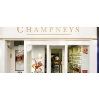 Champneys City Spa 50-Minute Pregnancy Massage - Spa Gifts