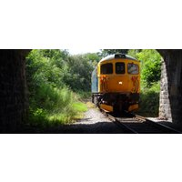 Diesel Train Driving Experience - Derbyshire - Diesel Gifts