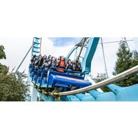 Drayton Manor 1 Day Adult Park & Food Ticket - Adult Gifts