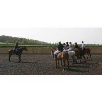 Introduction to Polo - York - Polo Gifts