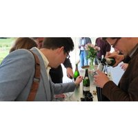 Wine Maker For The Day - Wine Workshop - Alcohol Gifts
