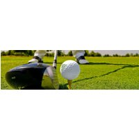 PGA Professional 30 Minute Golf Lesson - Golf Gifts