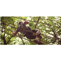 Click to view details and reviews for High Ropes Course For Children In East Sussex.