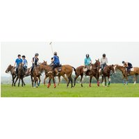 Learn Polo - Beginners Polo Lesson Hampshire - Polo Gifts