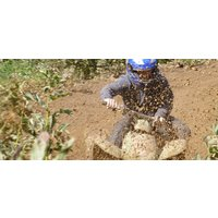Quad Bike Driving Experience - Worcestershire - Bike Gifts
