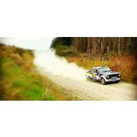 Click to view details and reviews for Bronze Forest Rally Experience Wales.