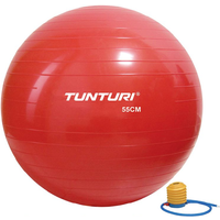 Tunturi Gymball 55cm Rood