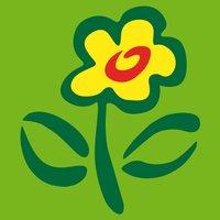 Blumenstrauß Frühlingsbote