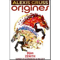 Affiche Grand spectacle  ALEXIS GRUSS - ORIGINES © Fnac Spectacles