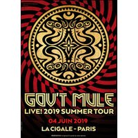 Affiche Blues/Country  GOV'T MULE © Fnac Spectacles