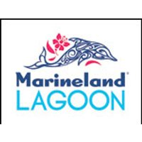 Affiche Parc d'attraction  MARINELAND LAGOON+ENTREE MARINELAND © Fnac Spectacles