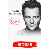 Affiche Pop-rock / Folk  DAVID HALLYDAY © Fnac Spectacles