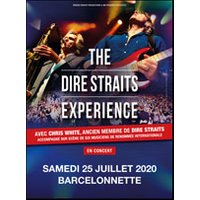 Affiche Rock  THE DIRE STRAITS EXPERIENCE © Fnac Spectacles