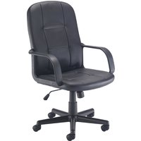 Cerami Leather Look Executive Chair