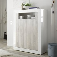 Product photograph showing Nitro 2 Doors Wooden Storage Unit In White Gloss And White Pine