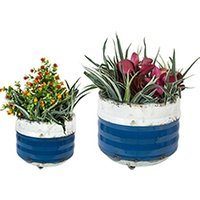 Product photograph showing Bondi Blue Balcony Planters Set Of Two