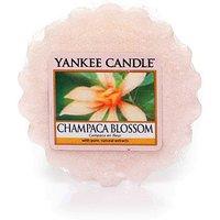 Yankee Candle Duftwachs Tart Champaca Blossom 22 g