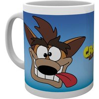 Crash Bandicoot Cartoon Crash Mug - Cartoon Gifts
