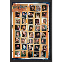 Harry Potter 7 Characters Framed Maxi Poster - Harry Potter Gifts