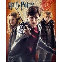 Harry Potter 7 Trio Mini Poster - Harry Potter Gifts