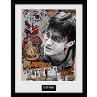 Harry Potter Harry Potter Framed Collector Print - Harry Potter Gifts
