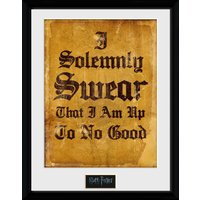 Harry Potter I Solomnly Swear Framed Collector Print - Harry Potter Gifts