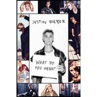 Justin Bieber Grid Maxi Poster