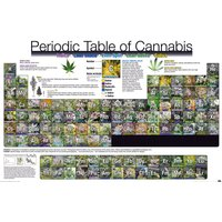 Periodic Table Of Cannabis Maxi Poster - Cannabis Gifts
