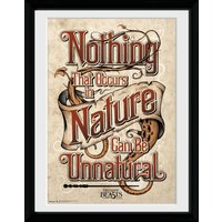 Fantastic Beasts Nature Collector Print - Nature Gifts